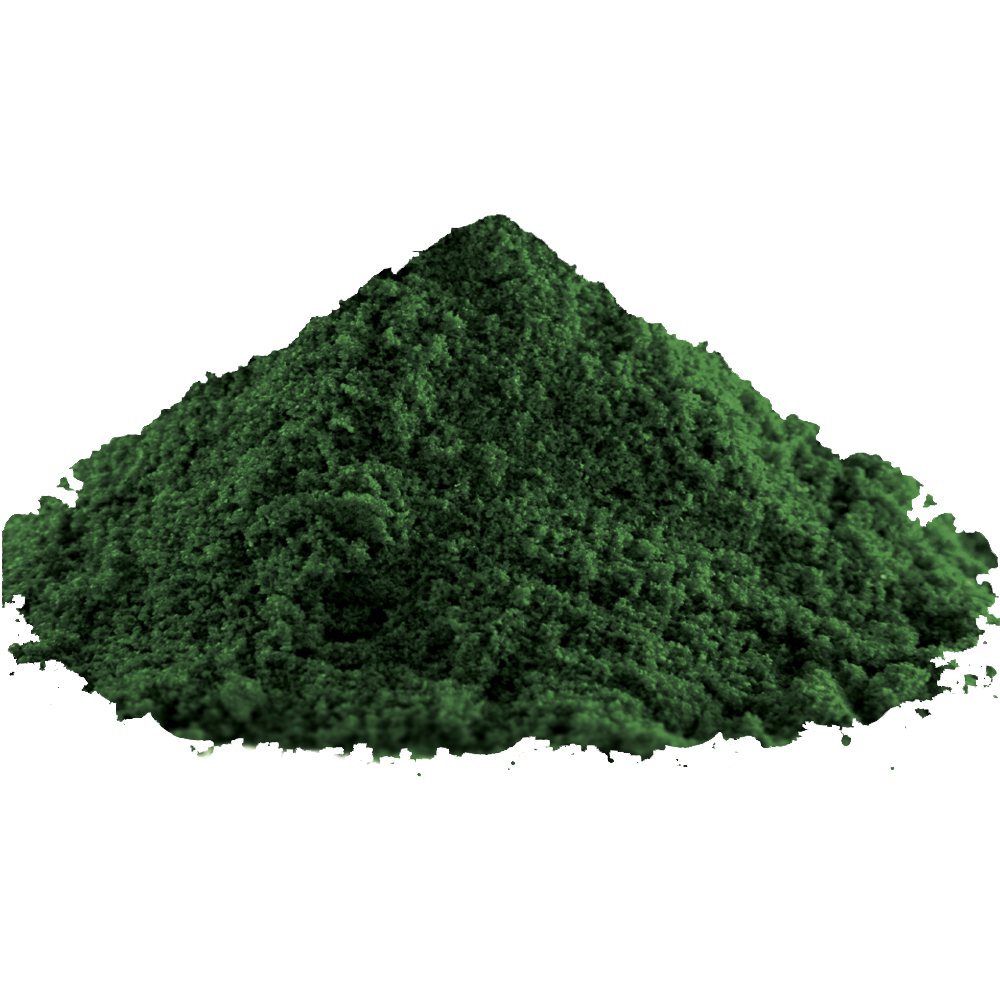 биомаса от едноклетъчни синьо-зелени водорасли